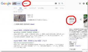 Googleの類似画像検索でチャレンジ!