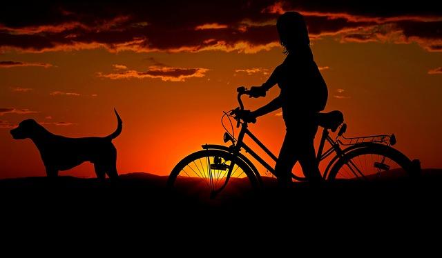 通勤・通学で大活躍!おすすめの自転車はどこにある?