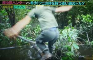 クレイジージャーニーの加藤先生ボートからジャンプ